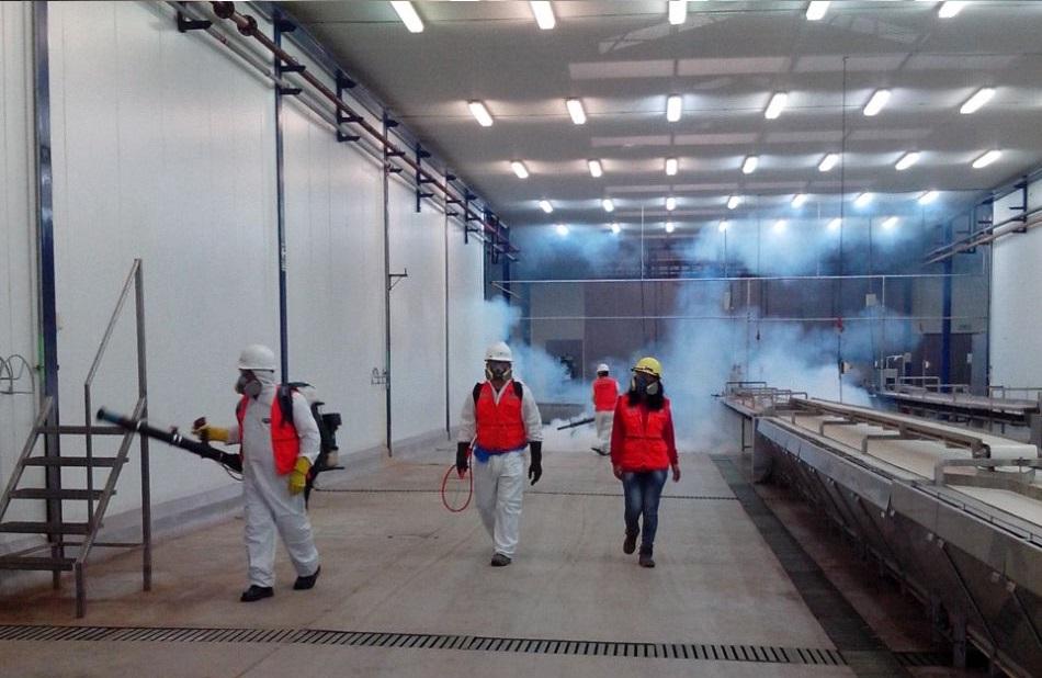 fumigacion ecoglobo